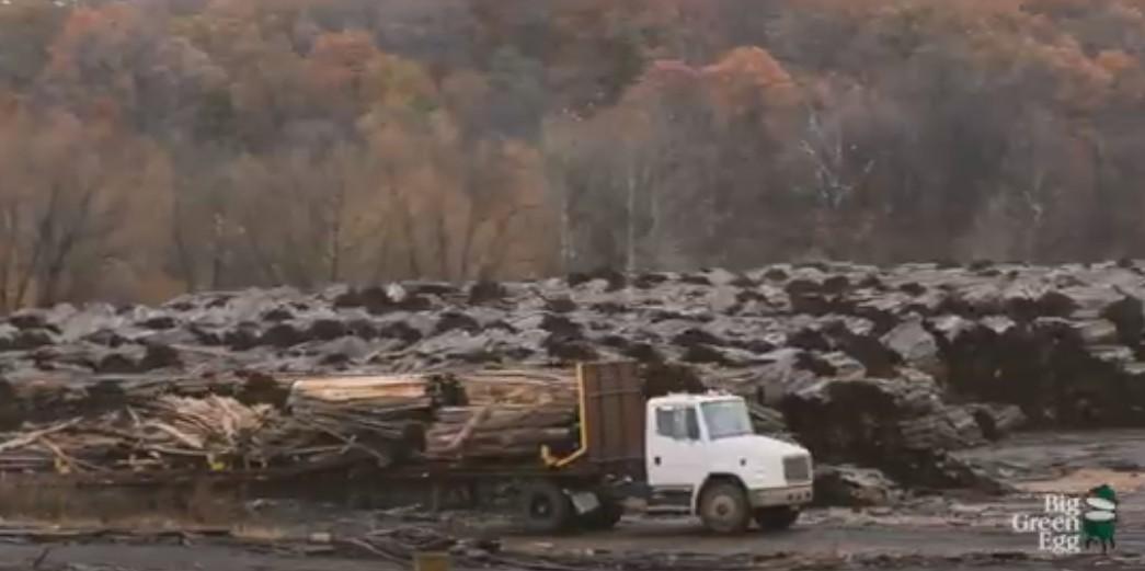 Заготовка дуба и гикори для древесного угля